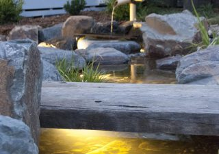 Japanese garden stream in Footscray