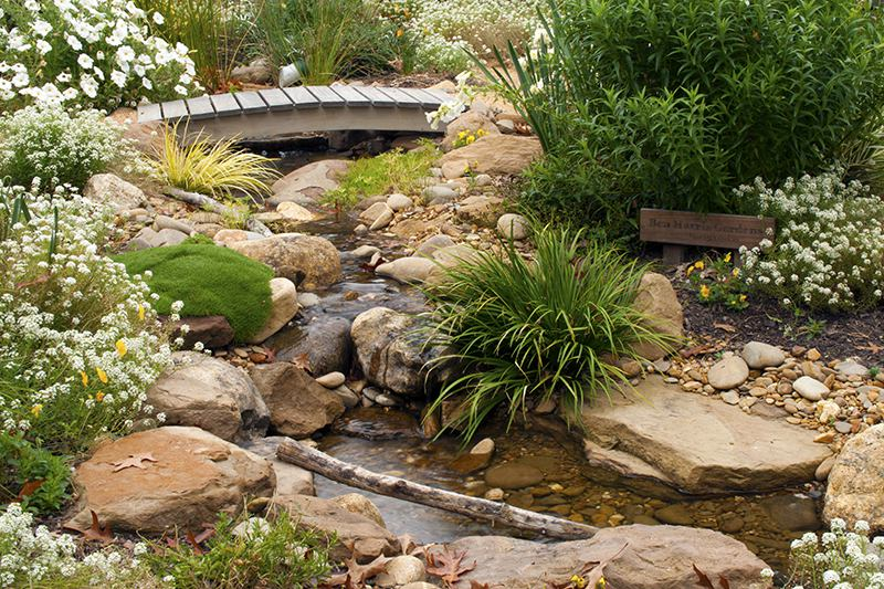Cottage garden stream