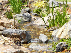 Garden stream in front yard in Cranbourne