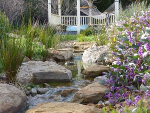 Native garden stream in Lysterfield