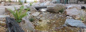 Upwey rocky stream