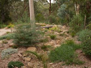 Blackburn dry creek bed