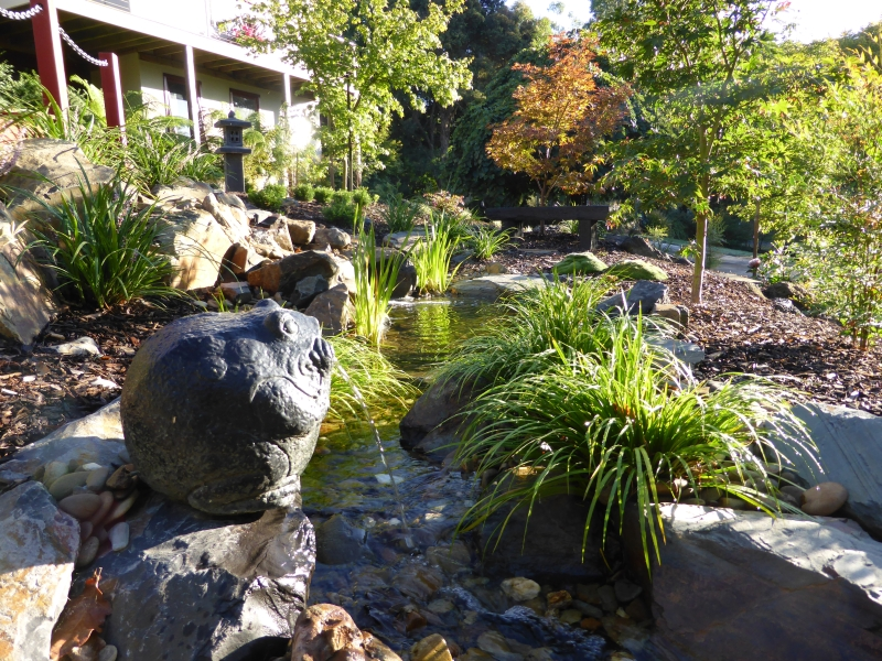 Stream in a Japanese style garden