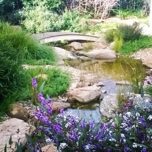 Native style garden stream.